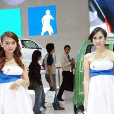 sales promotion girl IIMS 2014-2