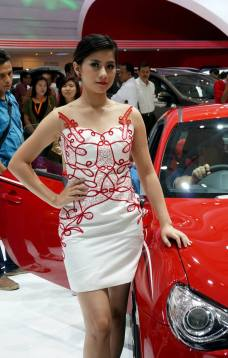 sales promotion girl IIMS 2014-4