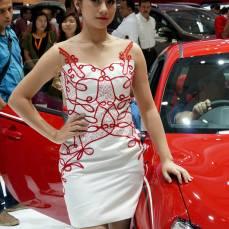 sales promotion girl IIMS 2014-4