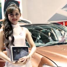 sales promotion girl IIMS 2014