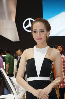 spg stand mobil IIMS 2014-4